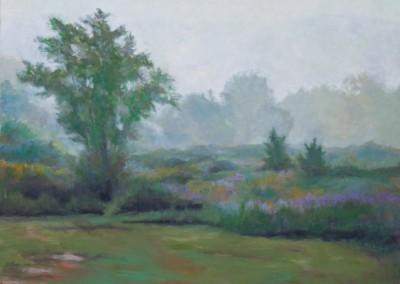 Bellvalle Fog Morning